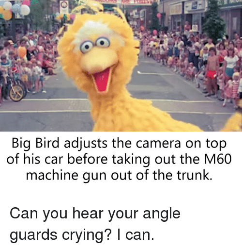 Big Bird Adjusts the Camera on Top of His Car Before Taking