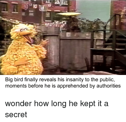 Big Bird Finally Reveals His Insanity to the Public Moments