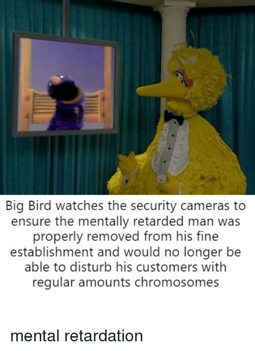Ensure, Watches, and Big Bird: Big Bird watches the security cameras to  ensure the mentally retarded man was  properly removed from his fine  establishment and would no longer be  able to disturb his customers withh  regular amounts chromosomes mental retardation