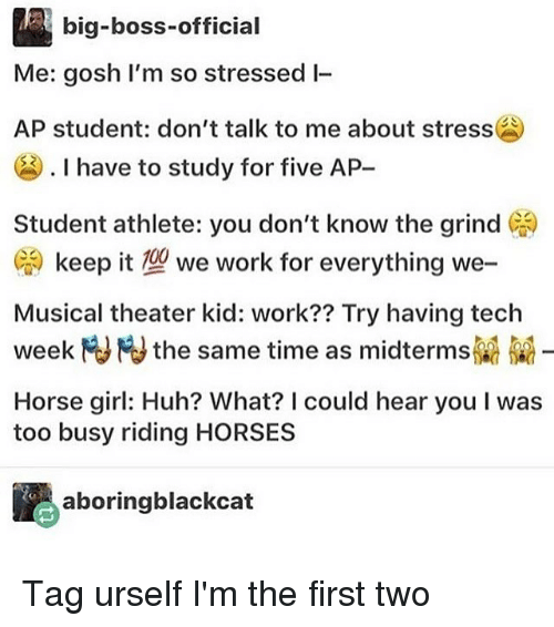 Horses, Huh, and Memes: big-boss-official  Me: gosh I'm so stressed l-  AP student: don't talk to me about stress  . I have to study for five AP-  Student athlete: you don't know the grind (  :) keep it型we work for everything we-  Musical theater kid: work?? Try having tech  week Fu Fu the same time as midterms  Horse girl: Huh? What? I could hear you I was  too busy riding HORSES  aboringblackcat Tag urself I'm the first two