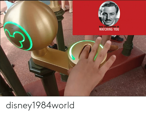 BIG BROTHER IS WATCHING YOU Disney1984world | Reddit Meme on