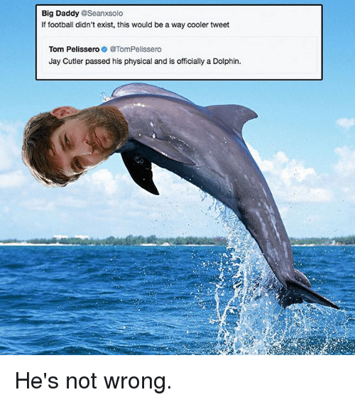 Football, Jay, and Memes: Big Daddy @Seanxsolo  If football didn't exist, this would be a way cooler tweet  Tom PelisseroTomPelissero  Jay Cutler passed his physical and is officially a Dolphin. He's not wrong.