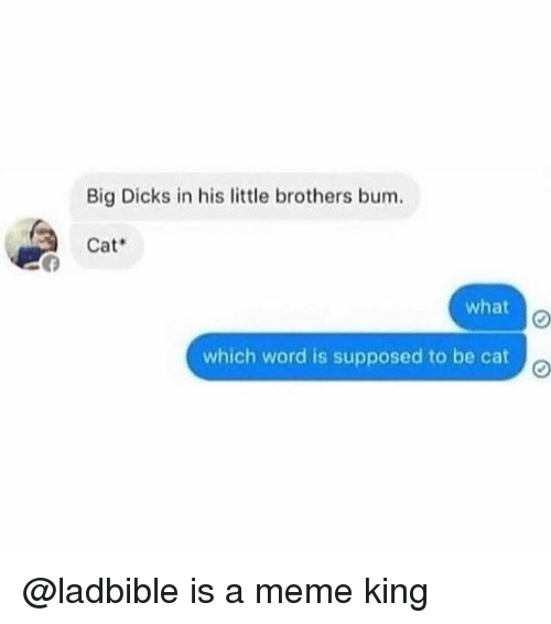 Dicks, Meme, and Memes: Big Dicks in his little brothers bum.  Cat  what  which word is supposed to be cat @ladbible is a meme king