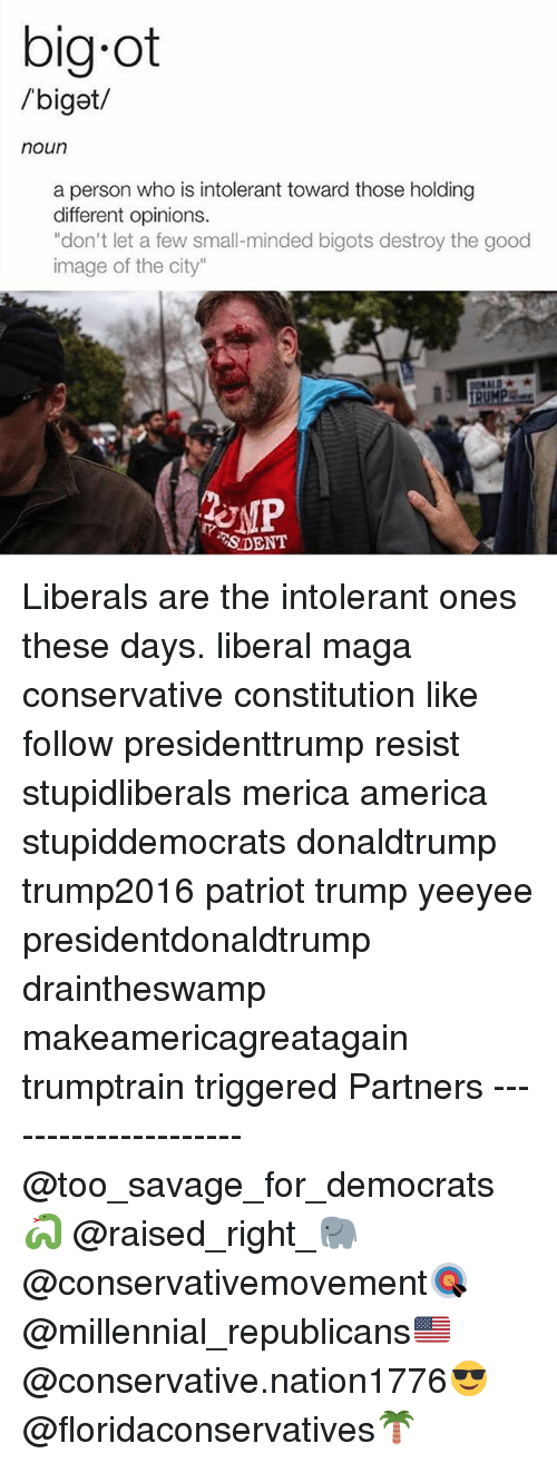 "America, Memes, and Savage: big ot  /biget/  noun  a person who is intolerant toward those holding  different opinions.  ""don't let a few small-minded bigots destroy the good  image of the city""  SDENT Liberals are the intolerant ones these days. liberal maga conservative constitution like follow presidenttrump resist stupidliberals merica america stupiddemocrats donaldtrump trump2016 patriot trump yeeyee presidentdonaldtrump draintheswamp makeamericagreatagain trumptrain triggered Partners --------------------- @too_savage_for_democrats🐍 @raised_right_🐘 @conservativemovement🎯 @millennial_republicans🇺🇸 @conservative.nation1776😎 @floridaconservatives🌴"