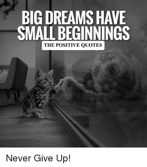 Quotes, Never, And Positive Quotes: BIGDREAMSHAVE SMALL BEGINNINGS THE POSITIVE  QUOTES Never Give