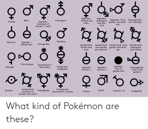 Funny, Pokemon, and Transgender: Bigender  geneBigender: third Demiagender:  Male  androgyne gender an  boy  Androgyne  male and  Female  Bigender  (example of  female male)  d demi- with demigirl  male  and neu  trois  Neutrois  Demiboy  Agender /  Genderless  Intergender  Genderfluid: Genderfluid: Genderfluid: third Genderfluid:  female and intergender gender and demi androgyne  male  and neutrois  girl  and female  Third Gender Genderqueer/  Pangender /  Poligender  Agender:  version  gendervoid  Demigirl  Non-binary  Agender  version 1  Agender:  version 2  Demiagender  (with third  gender)  Genderfluid  (example of ransgender  Transgender  (alternative version)  Epicene  Butch  Travesti n-b  Aliagender  Femme  female and male) What kind of Pokémon are these?