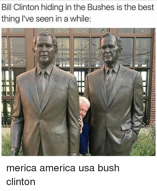 America, Bill Clinton, and Memes: Bill Clinton hiding in the Bushes is the best  thing l've seen in a while:  제11 merica america usa bush clinton