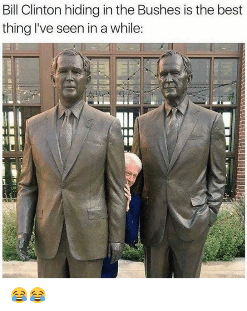 Bill Clinton, Memes, and Best: Bill Clinton hiding in the Bushes is the best  thing I've seen in a while: 😂😂