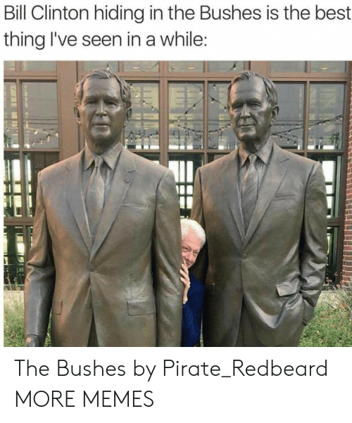 Bill Clinton, Dank, and Memes: Bill Clinton hiding in the Bushes is the best  thing I've seen in a while The Bushes by Pirate_Redbeard MORE MEMES