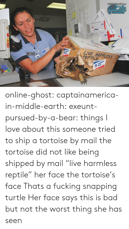 """Bad, Fucking, and Love: Bill Lo  LIVE HARBLESs  EPTILE online-ghost:  captainamerica-in-middle-earth:  exeunt-pursued-by-a-bear:  things I love about this someone tried to ship a tortoise by mail the tortoise did not like being shipped by mail """"live harmless reptile"""" her face the tortoise's face  Thats a fucking snapping turtle  Her face says this is bad but not the worst thing she has seen"""