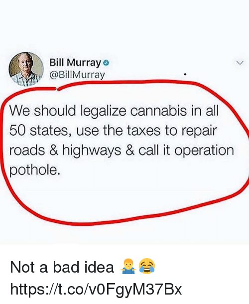Bill Murray We Should Legalize Cannabis In All 50 States
