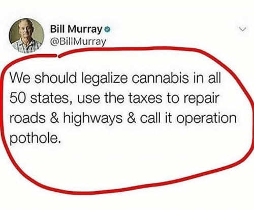 Memes, Taxes, and Bill Murray: Bill Murray  @BillMurray  We should legalize cannabis in all  50 states, use the taxes to repair  roads & highways & call it operation  pothole.
