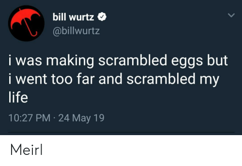 Life, May 19, and MeIRL: bill wurtz Q  @billwurtz  i was making scrambled eggs but  i went too far and scrambled my  life  10:27 PM 24 May 19 Meirl