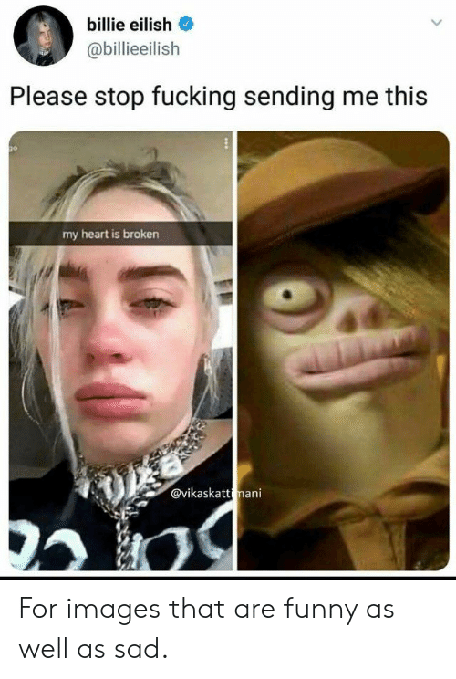 Funny, Heart, and Images: billie eilish  @billieeilislh  Please stop fucking sending me this  my heart is broken  @vikaskatt mani For images that are funny as well as sad.