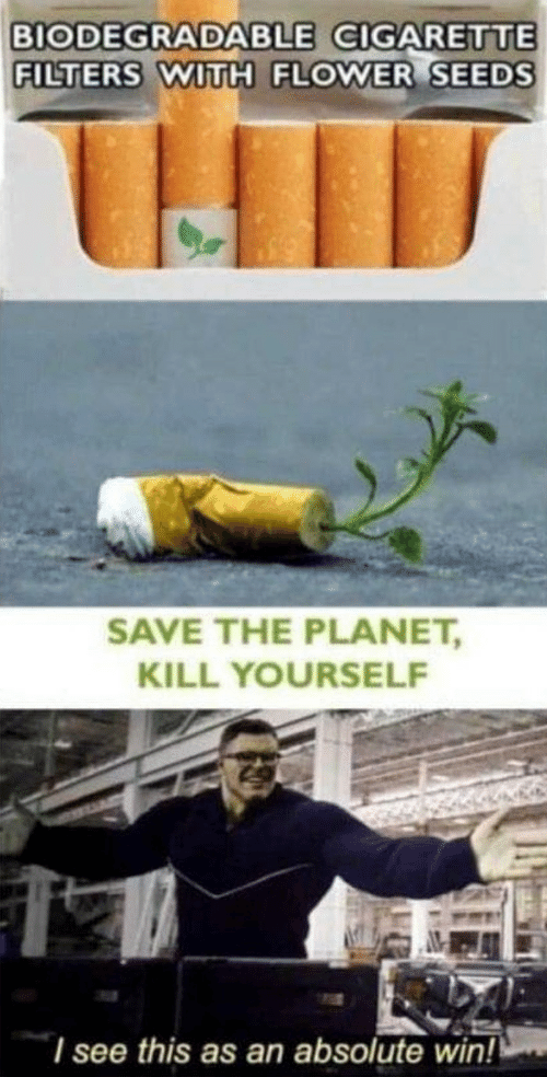 Flower, Cigarette, and Planet: BIODEGRADABLE CIGARETTE  FILTERS WITH FLOWER SEEDS  SAVE THE PLANET,  KILL YOURSELF  I see this as an absolute win!