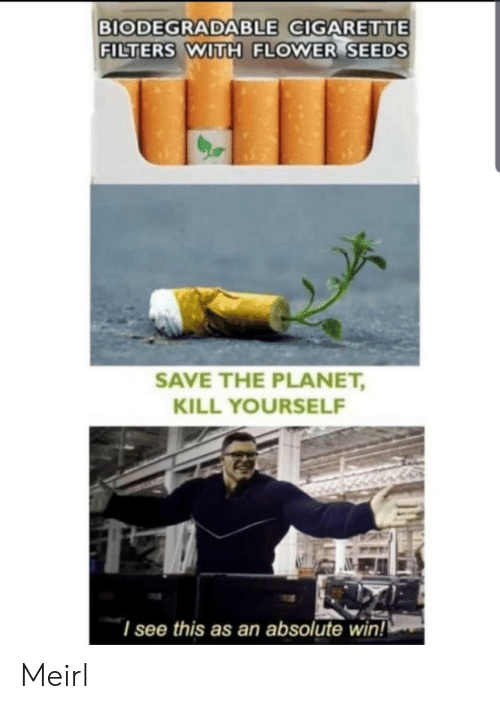 Flower, MeIRL, and Cigarette: BIODEGRADABLE CIGARETTE  FILTERS WITH FLOWER SEEDS  SAVE THE PLANET,  KILL YOURSELF  I see this as an absolute win! Meirl