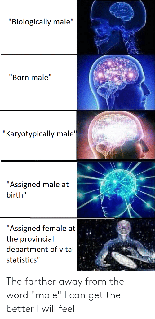 Biologically Male Born Male Karyotypically Male Assigned