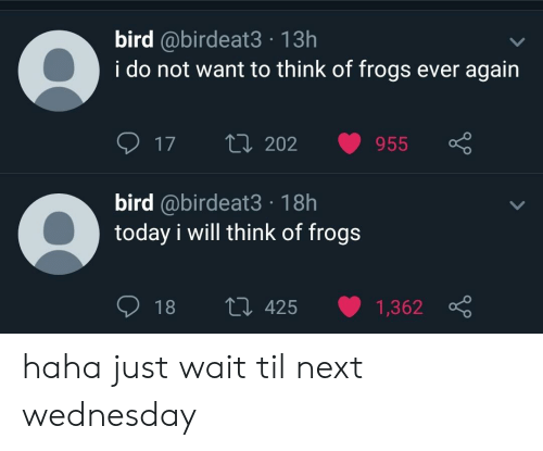 Today, Wednesday, and Haha: bird @birdeat3 13h  i do not want to think of frogs ever agairn  17 t 202 955  bird @birdeat3 18h  today i will think of frogs  18 t0 425 1,362 haha just wait til next wednesday