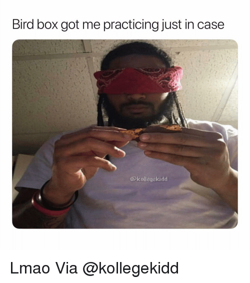 Lmao, Weed, and Marijuana: Bird box got me practicing just in case  @kollegekidd Lmao Via @kollegekidd