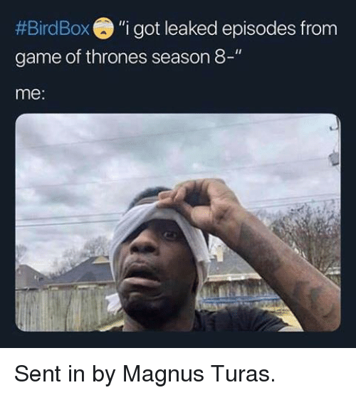 "Game of Thrones, Game, and Got:  #Bird Box ""i got leaked episodes from  game of thrones season 8-""  me: Sent in by Magnus Turas."