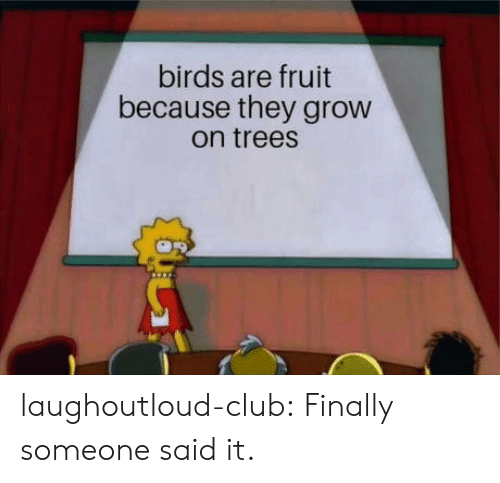 Club, Tumblr, and Birds: birds are fruit  because they grow  on treesS laughoutloud-club:  Finally someone said it.