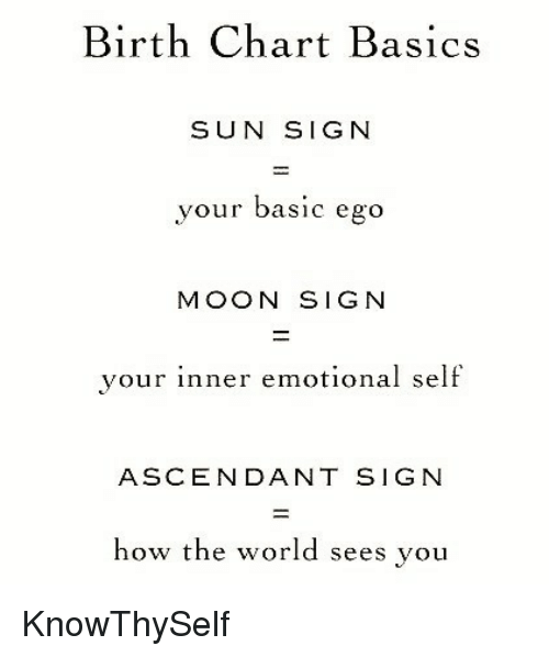 25 best memes about sun signs sun signs memes. Black Bedroom Furniture Sets. Home Design Ideas