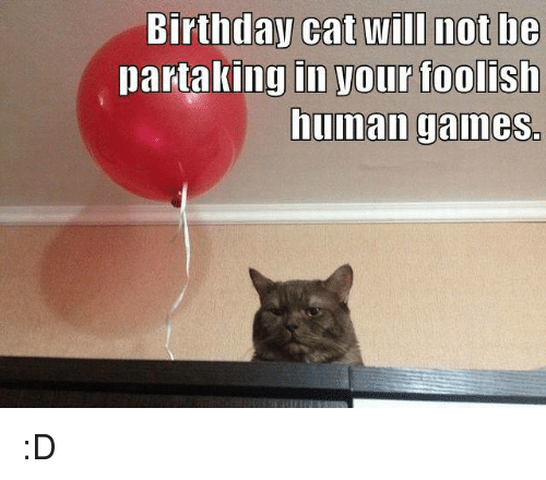 Birthday Cat Will Not Be In Your Foolish Human Games Partaking D