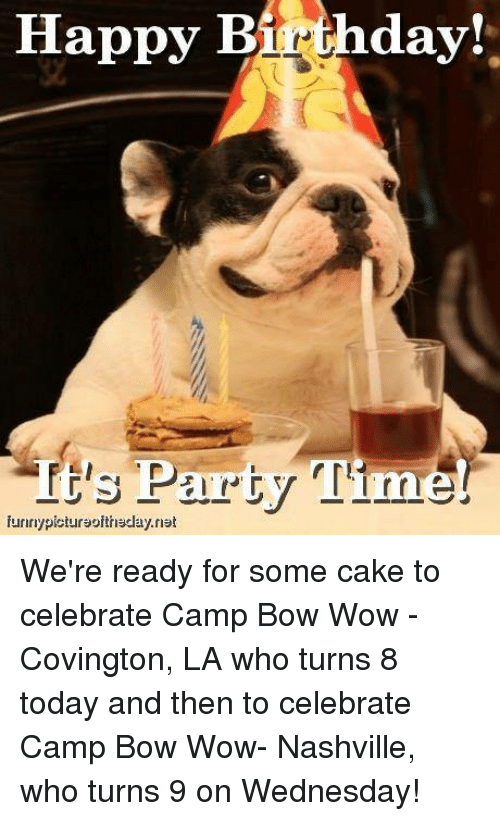 Birthday Memes And Party Its Time Funnypictursoithsclaynst