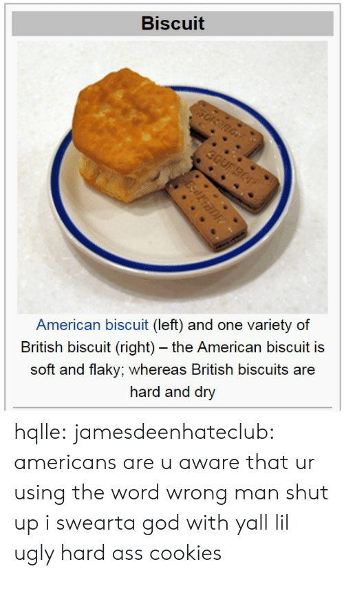 Cookies, God, and Shut Up: Biscuit  American biscuit (left) and one variety of  British biscuit (right) - the American biscuit is  soft and flaky; whereas British biscuits are  hard and dry hqlle:  jamesdeenhateclub:  americans are u aware that ur using the word wrong  man shut up i swearta god with yall lil ugly hard ass cookies