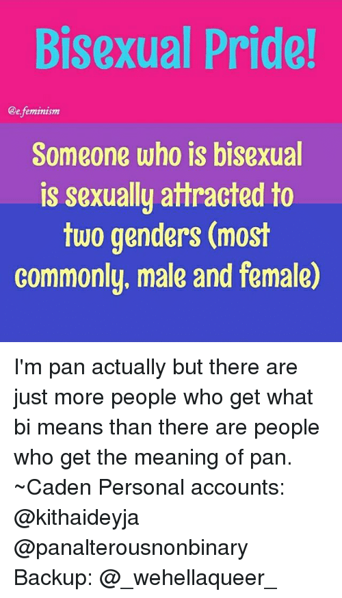 What does bisexual pride mean
