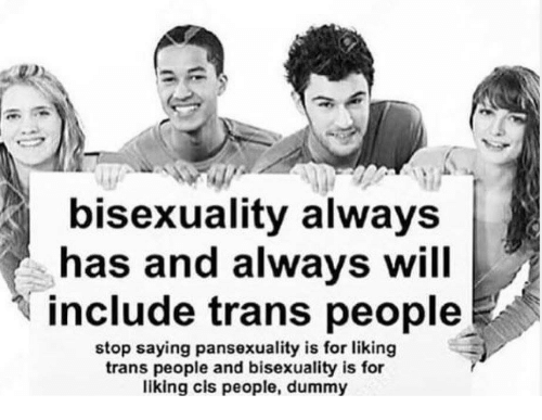 Bisexuality, Cis, and Will: bisexuality always  has and always will  include trans people  stop saying pansexuality is for liking  trans people and bisexuality is for  liking cis people, dummy