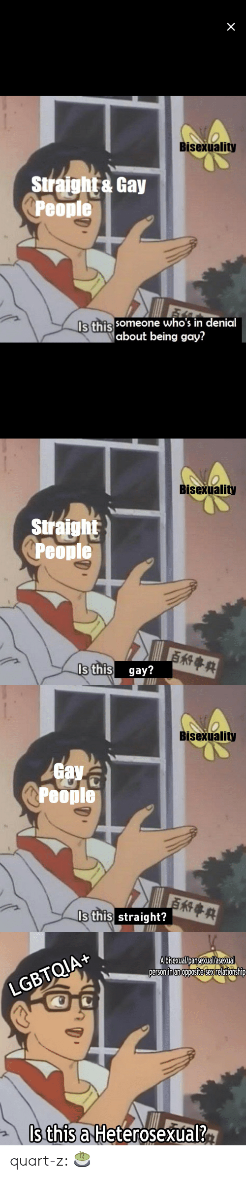 Sex, Tumblr, and Asexual: Bisexuality  Siraht Gay  Peopie  Is this  someone who's in denial  about being gay?   Bisexuality  Siraight  People  s this gay?   Bisexuality  av  People  Is this straight?   LGBTQIA+  A bisexual/Dansexual/asexual  person inan opposite-sex relationshiD  Is this a Heterosexual? quart-z:  🍵