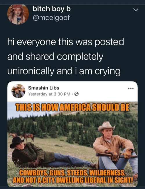 Bitch, Dallas Cowboys, and Crying: bitch boy b  @mcelgoof  hi everyone this was posted  and shared completely  unironically and i am crying  Smashin Libs  Yesterday at 3:30 PM.  THISIS HOWAMERICASHOULDBE  COWBOYS,GUNS, STEEDS,WILDERNESS  AND NOTACİTY DWELLING LIBERAL INSIGHTL