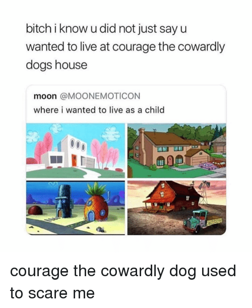 Bitch, Courage the Cowardly Dog, and Dogs: bitch i know u did not just sayu  wanted to live at courage the cowardly  dogs house  moon @MOONEMOTICON  where i wanted to live as a child courage the cowardly dog used to scare me