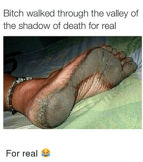 Bitch, Death, and Dank Memes: Bitch walked through the valley of  the shadow of death for real For real 😂