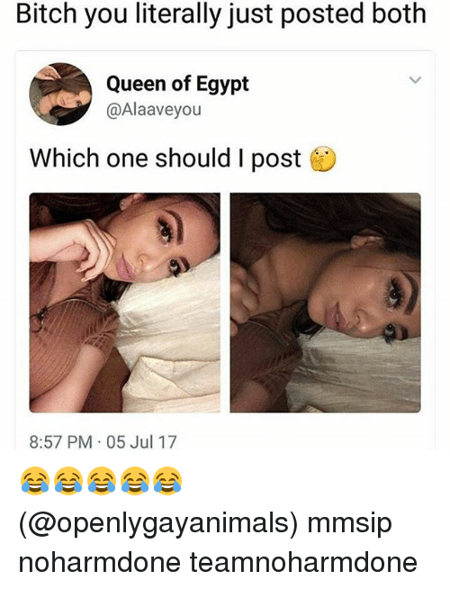 Bitch, Memes, and Queen: Bitch you literally just posted both  Queen of Egypt  @Alaaveyou  Which one should I post  8:57 PM 05 Jul 17 😂😂😂😂😂 (@openlygayanimals) mmsip noharmdone teamnoharmdone