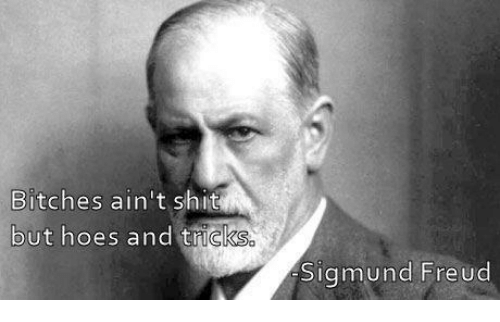Memes Sigmund Freud And  F0 9f A4 96 Bitches Aint Shit But Hoes And