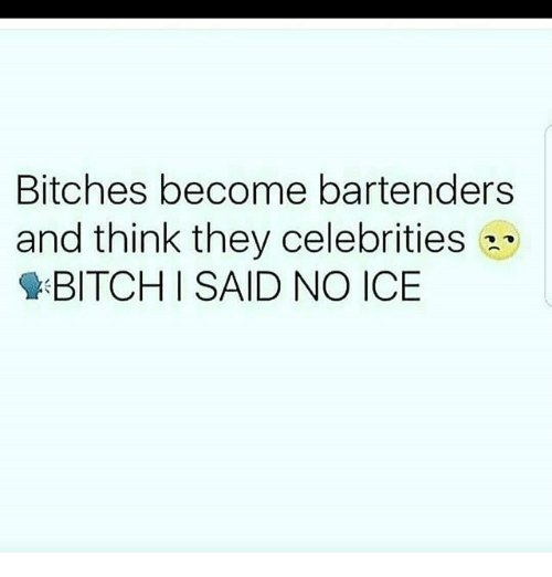 Bitch, Memes, and Celebrities: Bitches become bartenders  and think they celebrities  BITCH I SAID NO ICE