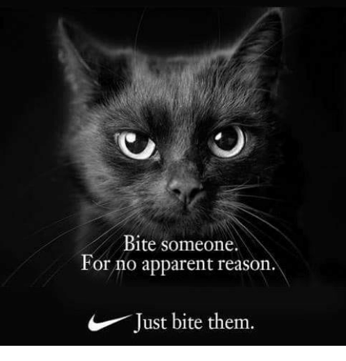 Memes, Reason, and 🤖: Bite someone.  For no apparent reason.  Just bite them.