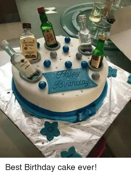 Bithday Best Birthday Cake Ever Birthday Meme On Me