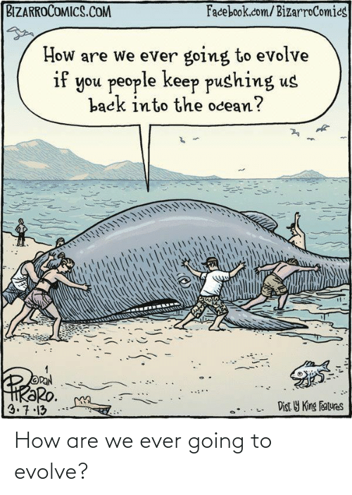 Facebook, Evolve, and facebook.com: BIZARROCOMICS.COM  Facebook.com/BizarroComics  How are we ever going to evolve  if you people keep pushing us  back into the ocean?  OPAN  HRƏRO.  3.7.13  Dist Y King Features How are we ever going to evolve?