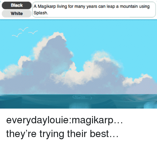 Magikarp, Tumblr, and Best: Black  A Magikarp living for many years can leap a mountain using  White Splash. everydaylouie:magikarp…they're trying their best…