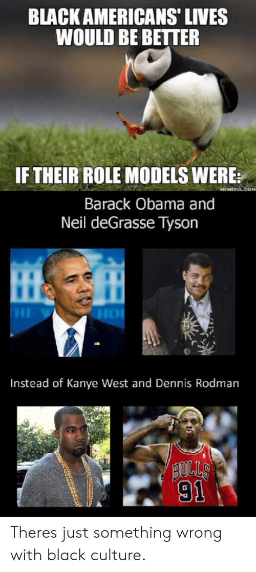 Dennis Rodman, Kanye, and Neil deGrasse Tyson: BLACK AMERICANS' LIVES  WOULD BE BETTER  IF THEIR ROLE MODELS WERE:  Barack Obama and  Neil deGrasse Tyson  Instead of Kanye West and Dennis Rodman  AULLS  91 Theres just something wrong with black culture.