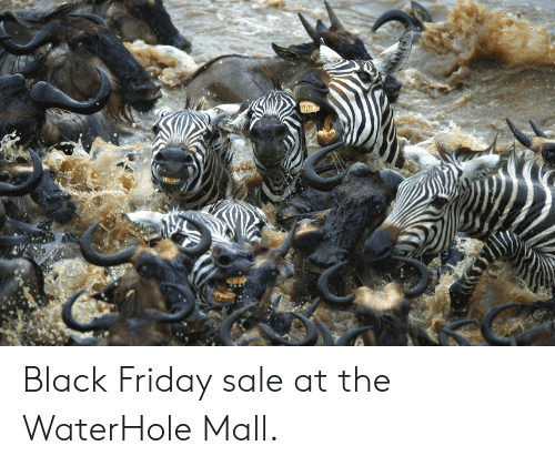 Black Friday, Friday, and Funny: Black Friday sale at the WaterHole Mall.