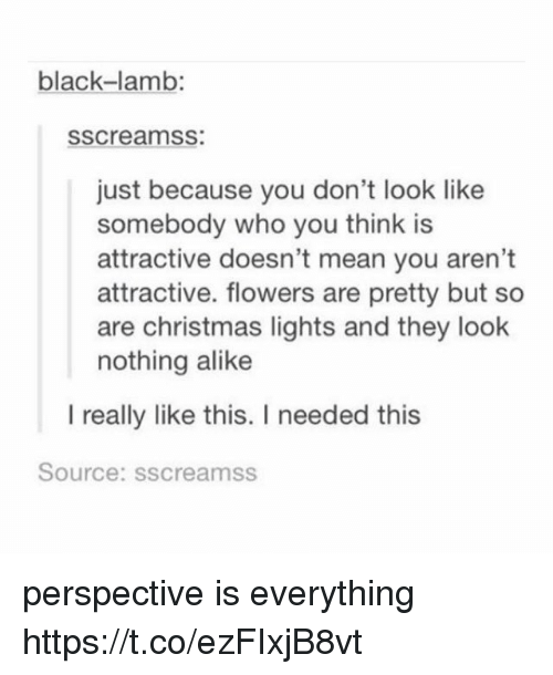 Christmas, Memes, and Black: black-lamb:  sscreamss:  just because you don't look like  somebody who you think is  attractive doesn't mean you aren't  attractive. flowers are pretty but so  are christmas lights and they look  nothing alike  I really like this. I needed this  Source: sscreamss perspective is everything https://t.co/ezFIxjB8vt