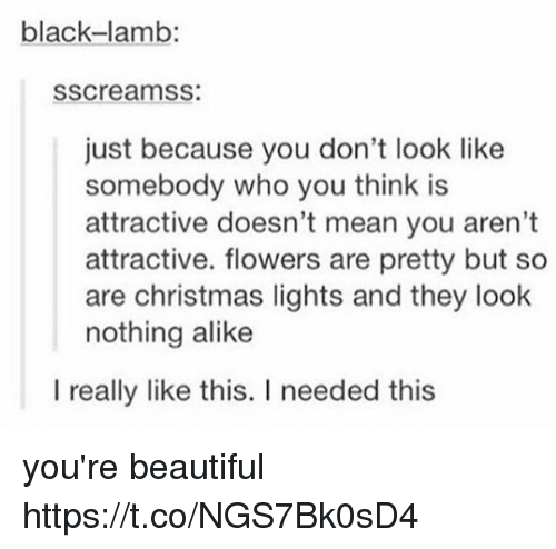 Beautiful, Christmas, and Black: black-lamb:  sscreamss:  just because you don't look like  somebody who you think is  attractive doesn't mean you aren't  attractive. flowers are pretty but so  are christmas lights and they look  nothing alike  l really like this. I needed this you're beautiful https://t.co/NGS7Bk0sD4