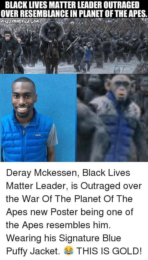25+ Best Memes About Planet of the Apes : Planet of the ...