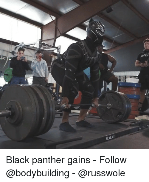 Memes, Black, and Black Panther: Black panther gains - Follow @bodybuilding - @russwole