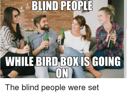 Blind People While Bird Box Is Going Box Meme On Me Me