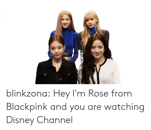 Disney, Tumblr, and Blog: blinkzona:  Hey I'm Rose from Blackpink and you are watching Disney Channel